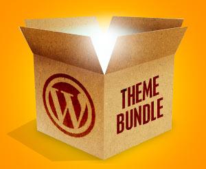 Highest Value WordPress Packages