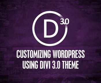 DIvi 3.0 WordPress Theme - Customize your wordpress design!